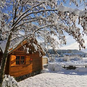 Gorgeous Authentic Private Log Cabin With Outdoor Gas Heated Bath Under The Stars, Wifi, Sky Tv, Luxurious Satin Jet Shower And Magnificent Mountain Views photos Exterior