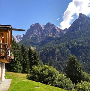 "The ""Small"" Maso Raris Alpine Chalet & Dolomites Retreat photos Exterior"
