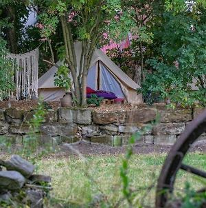 Into The Green Glamping - Great Hazelnut photos Exterior