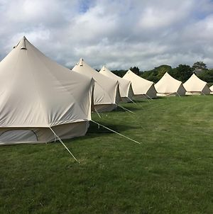 New Forest Glamping Teddy'S Farm photos Exterior