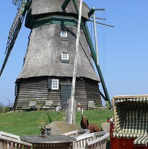Windmill Holiday Home In Farve Garden And Panoramic Views photos Room