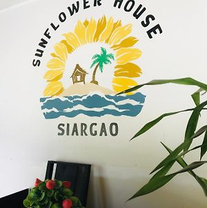 Sunflower House Siargao photos Exterior