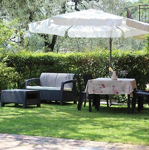 Relax In The Olive Grove photos Exterior