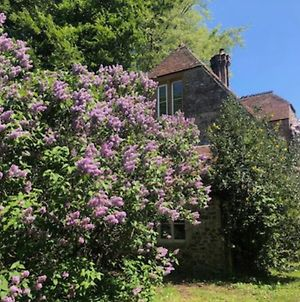Beautiful Converted Stable In Peaceful Somerset, Close To The Jurassic Coast photos Exterior