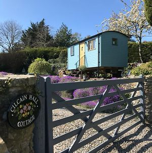 Shepherds Hut In The Hills - Nr. Mold photos Exterior