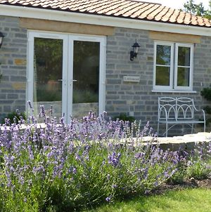 Littlemead - Newly Renovated Private Studio Near Glastonbury photos Exterior
