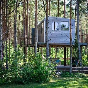 Unique Treehouse For Two photos Exterior