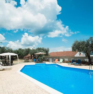 Olive Grove Poolside Apartments photos Exterior