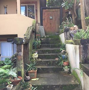 Omokoroa Overlooking The Harbour And Dog Friendly 3-Bedroom Flat Which Is The Ground Floor Of Family Home And Can Accommodate 1-7 Guests photos Exterior