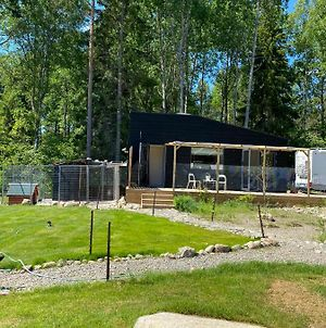 Tiny House In The Middle Of Nature photos Exterior