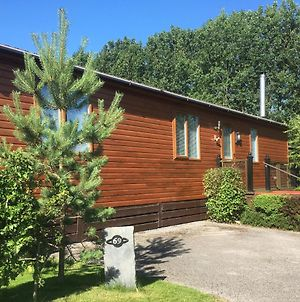 Woodpecker Lodge - Timber Lodge With Hot Tub photos Exterior