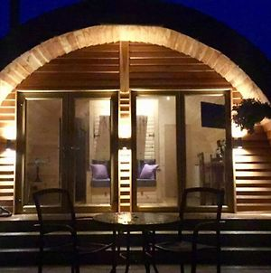 Tollymore Luxury Log Cabin photos Exterior