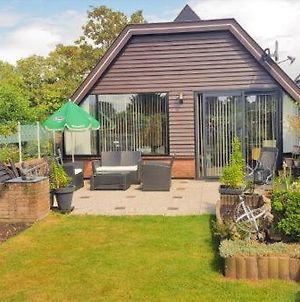 Lovely Bungalow Till 6 Persons Near Amsterdam And The Sea photos Exterior