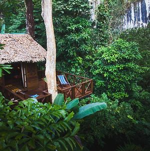 Our Jungle House photos Exterior