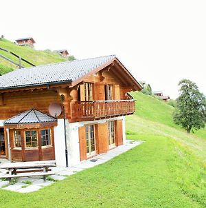 Cozy Chalet On Slopes In Heremence With Sauna photos Exterior