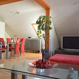 Lovely Holiday Home In Veldenz Near Mosel River photos Exterior