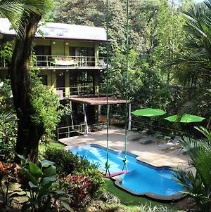 Jungle Roost A Beautiful Jungle House Within Walking Distance From The Beach photos Exterior
