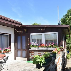 Cozy Bungalow In Kuhlungsborn-West Near Beach photos Exterior