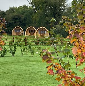 Southwell Retreat Glamping Pods photos Exterior