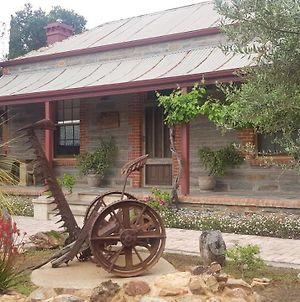 Angaston'S Rusty Olive B&B photos Exterior