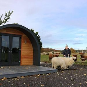 Glampods Glamping Pod - Meet Highland Cows And Sheep Elgin photos Exterior