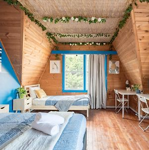 Rustic Private Room In Waterfront Beach Retreat 8 photos Exterior