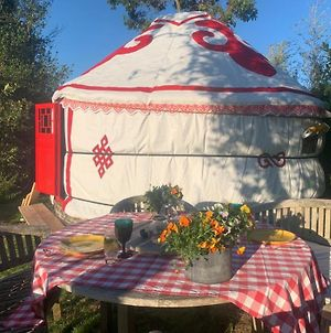Traditional Yurt @ Longleat photos Exterior