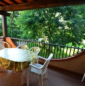Lovely Holiday Home In Marina Di Massa With Private Garden photos Exterior
