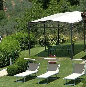 Agriturismo In The Hills, Private Terrace, Swimming Pool And Beautiful View photos Exterior