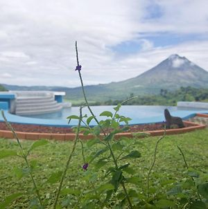 Serenity House. Gorgeous Private Home With Pool & Volcano View!! photos Exterior