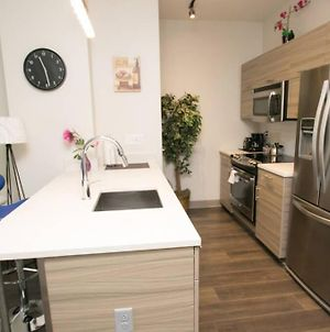 Ultra Modern New 1Br 1Ba By Rittenhouse Doorman!!! photos Exterior
