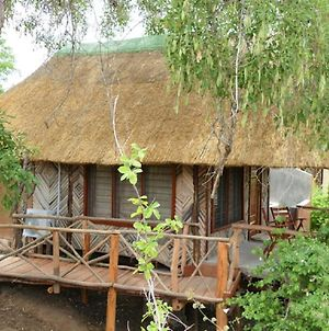 Njobvu Safari Camp, South Luangwa National Park photos Exterior