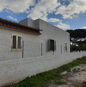 Wonderful Holiday Home In Porto Palo With Barbeque photos Exterior