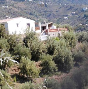 Villa With 2 Bedrooms In Malaga With Wonderful Mountain View Private Pool Terrace photos Exterior