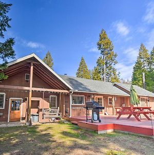 Authentic North Fork Cabin With Dock And Private Deck! photos Exterior