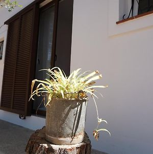 House With 2 Bedrooms In Platja De Migjorn With Furnished Garden And Wifi 500 M From The Beach photos Exterior
