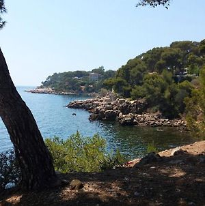Apartment With One Bedroom In Bandol With Furnished Terrace 2 Km From The Beach photos Exterior