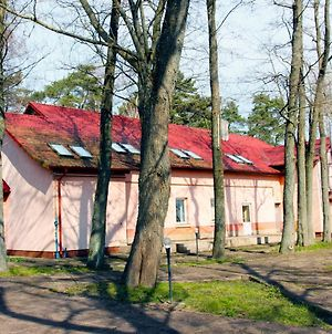 Lesnoye Holiday Park photos Exterior