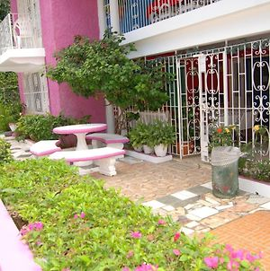 Pink Hibiscus Bed And Breakfast photos Exterior