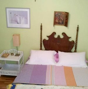 Apartment With 2 Bedrooms In Donostia With Furnished Terrace And Wifi 50 M From The Beach photos Exterior