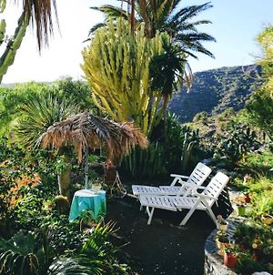 House With One Bedroom In Vallehermoso With Wonderful Mountain View Furnished Garden And Wifi 3 Km From The Beach photos Exterior