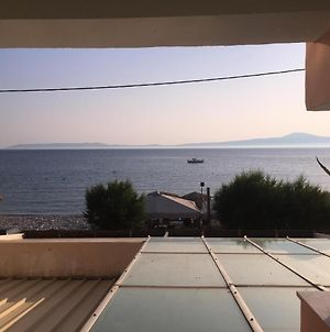 Apartment With One Bedroom In Ακpογιάλι With Wonderful Sea View Enclosed Garden And Wifi 10 M From The Beach photos Exterior