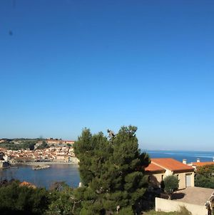 Appartement Collioure, 2 Pieces, 4 Personnes - Fr-1-309-157 photos Exterior