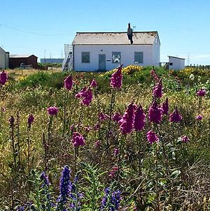 Charming Original Fishermans Cottage On Dungeness Beach photos Exterior