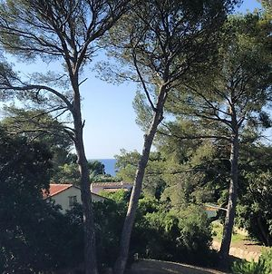 House With 3 Bedrooms In Saint Raphael With Furnished Terrace 540 M From The Beach photos Exterior