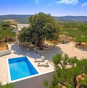 Praznice Villa Sleeps 5 With Pool Air Con And Wifi photos Exterior