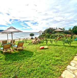 Beachfront Elena Villa With Mini Pool And Spa photos Exterior