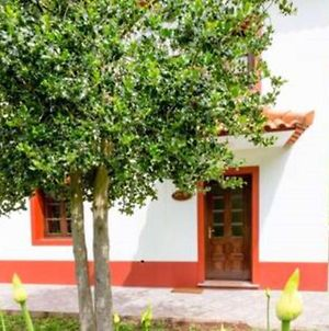 House With 2 Bedrooms In Camacha With Wonderful Mountain View Furnished Garden And Wifi 12 Km From The Beach photos Exterior