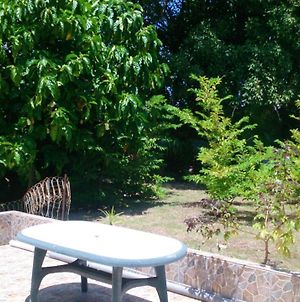 Bungalow With One Bedroom In Sainte Anne With Furnished Garden And Wifi photos Exterior