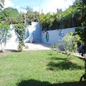 Bungalow With One Bedroom In Sainte Anne With Enclosed Garden And Wifi 3 Km From The Beach photos Exterior